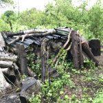 terra-bernina-tas de bois