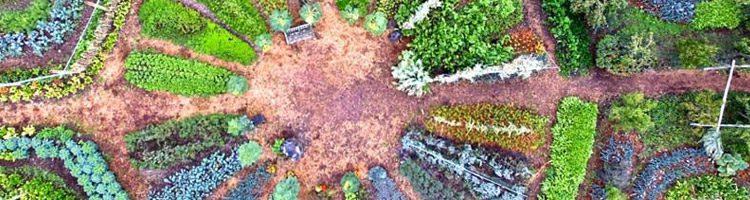 atanaka-paysage-permaculture
